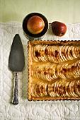Pear tart in rectangular baking tin