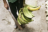 A man holding a bunch of plantains