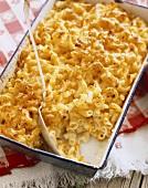 Macaroni and Cheese in Backform mit Löffel