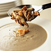 Putting a spoonful of mushrooms into mushroom soup