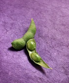 Whole and half soya bean pod on purple background