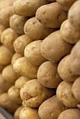 Potatoes on a market stall