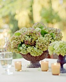 Table decoration of hydrangeas and candles (outdoors)
