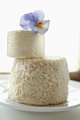 Two goat's cheeses with blue pansy