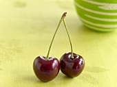 Two cherries on a stalk