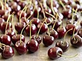 Many cherries with stalks