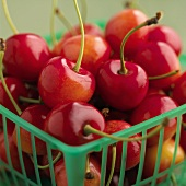Cherries in a plastic basket (detail)