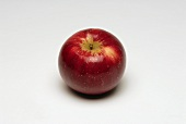 A red apple (variety: Akane)