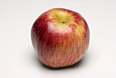 A red apple (variety: Eve's Delight)