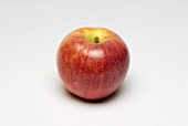 A Gala apple