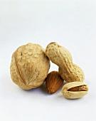Pistazie, Erdnuss, Mandel und Walnuss