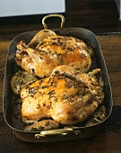 Two roast chickens in a roasting dish