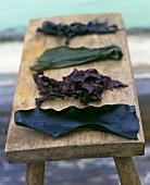 Various types of edible seaweed
