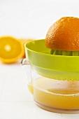 Ausgepresste Orange auf Zitruspresse
