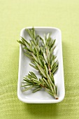 Rosemary Branch on a Small Rectangular Dish
