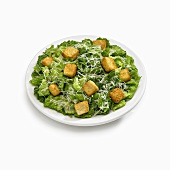 Caesar Salad on a White Plate, White Background