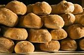 Many Bread Loaves