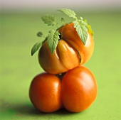 Two Stacked Tomatoes