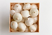 A Box of White Onions; From Above