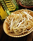 Mung Bean Sprouts in Bowl