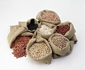 Assorted Dried Beans in Burlap Bags