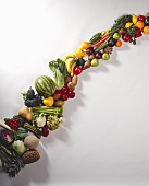 Still Life: Assorted Fruits and Vegetables in a Line