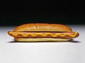 Foot-Long Hot Dog