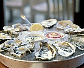 Austern mit zwei Saucen auf Eis