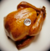 Roasted Turkey with a Meat Thermometer