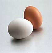 Ein braunes und ein weißes Ei