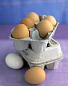 Eggs with Egg Carton