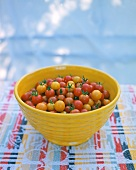 Colorful Tomatoes in Dish