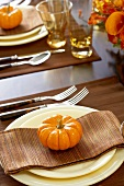 Place Settings with Gourds on Thanksgiving Dining Table