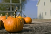 Close Up of a Pumpkin, Many Pumpkins on a Wooden Deck