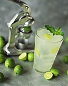 Glass of Fresh Squeezed Limeade; Limes and Juicer