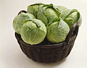 Heads of a Cabbage in a Basket