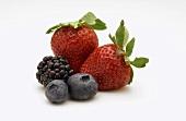 Erdbeeren, Heidelbeeren und Brombeere