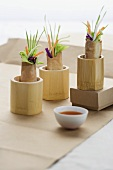 Three Vegetable Spring Rolls in Wooden Holders