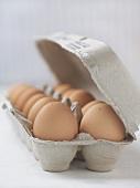 A Dozen Brown Eggs in a Cardboard Carton