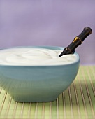 Bowl of Plain Yogurt with a Spoon