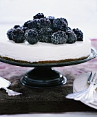 A Cheesecake Topped with Sugared Blackberries