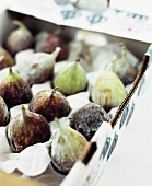 Figs in a Produce Box