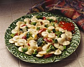 Bowtie Pasta and Vegetables in Alfredo Sauce