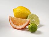 Frische Zitrone, Grapefruitschnitz und Limetten