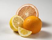 Assorted Citrus Fruit, Grapefruit, Orange and Lemon