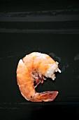 A Single Boiled Shrimp