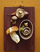 Three Mushroom Varieties : Porcini, Shiitake and Cremini