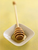 Honey Dipper on a Small Dish