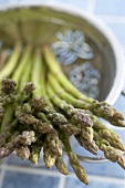 Close Up of Tips of Fresh Organic Asparagus in a Colander