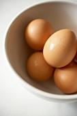Bowl of Organic Brown Eggs